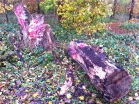 Woldgate-Felled-Totem-1