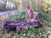 Woldgate-Felled-Totem-2