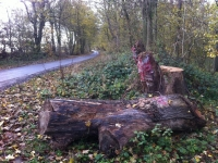 Woldgate-Felled-Totem-5