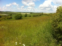 Yorkshire-Wolds-2