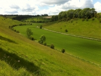 Yorkshire-Wolds-8
