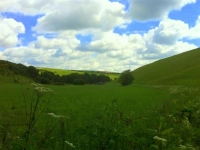 Yorkshire-Wolds-9