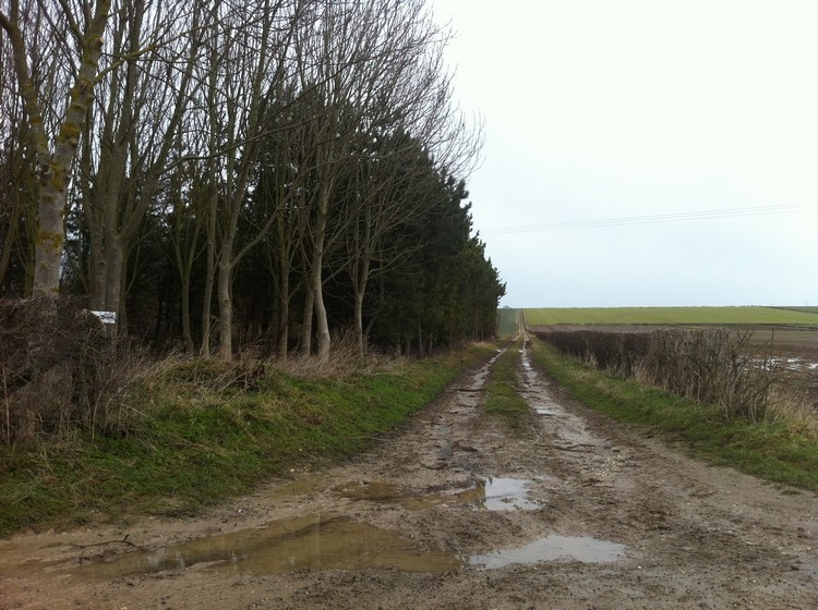 The location of 'A Bigger Puddle' and 'Puddle near Kilham'