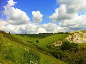 Fairy Dale Yorkshire Wolds