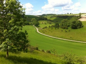 Long Dale Yorkshire Wolds