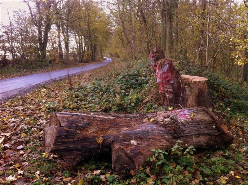 Hockney Totem Felled on Woldgate