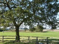 Broadgate-Farm-2010-001