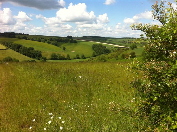 Yorkshire-Wolds-1