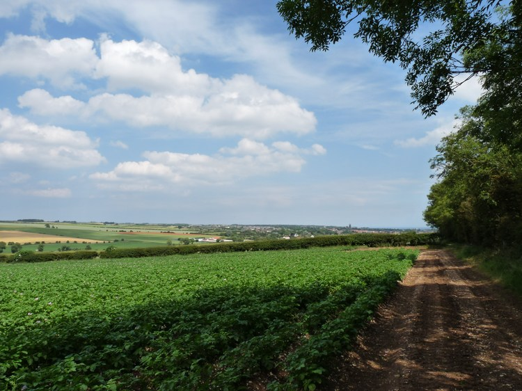 yorkshire-wolds-14